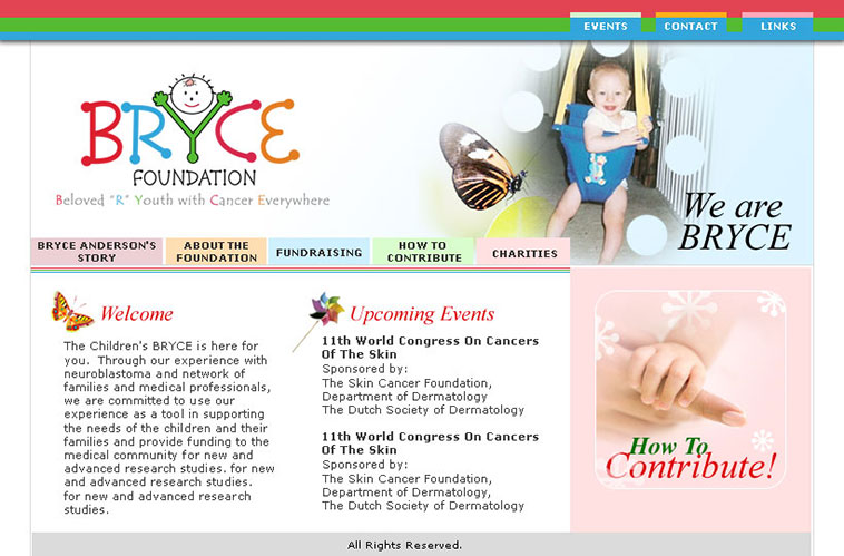 BRYCE Foundation Home Page Design